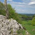 © Traudi – Randecker Maar – Diese Felsbrocken aus Juragestein wurden beim Vulkanausbruch emporgeschleudert.