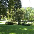Bad Herrenalb, Kurpark - ©Traudi