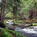Waldnaabtal zum Wandern und Radfahren