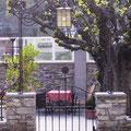 Gartentürl mit Rosenbogen -