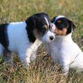 Maxl und Lotti
