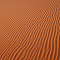 The silent curves of constant change. Sahara Desert.
