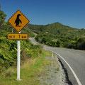 Lustige Verkehrszeichen gabs unterwegs zu sehen... mir ist leider kein Pinguin ueber den Weg gelaufen...