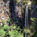 Wasserfall im Springbrook NP