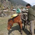 Das Pferd war aber nicht für mich direkt gedacht, sondern für unser Gepäck...