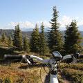 Ich begebe ich auf Tour mit dem Mountainbike.