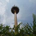 Ich goenne mir eine Fahrt mit dem Sky Tower...