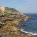 Auf dem coastal walk von Bondi nach Coggee...
