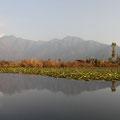 Das Prachtstück von Srinagar ist ohne Frage der große Dal-See.