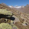 Die Farben der Steine wirken fast unnatürlich... grelles Grün...