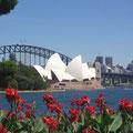 Blick vom Botanischen Garten auf das Opernhaus.