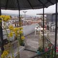 Die Terrasse ist eigentlich das Schoenste an meinem Hostel...