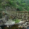 Mein Weg fuehrt mich weiter ins Karangahake Valley...