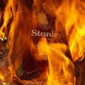 Das war der letzte Stanley Weinkarton... :-(