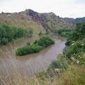 Aber da die Strasse im Wanganui NP genau an diesem Fluss entlang geht,...