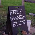 ... die ihre Produkte verschenken oder verkaufen... da hab ich natuerlich zugegriffen... Eier fuer umsonst, 3 Avocados fuer 50 ct... perfekt!