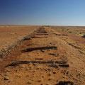 ... und einige alte Holzbalken der Bahnstrecke...