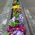 ...und tolle Blumenrabatten.