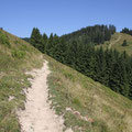 Schade, dass wir rechts diesen Hügel hoch mussten anstatt runter... :-(