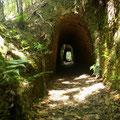 und viele kurze kleine Tunnel...