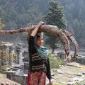 Krass auch, was die Frauen an Holz so tragen können...