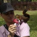 Im Botanischen Garten gibts ein eisfressendes Eichhoernchen...