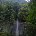 Diese Haengebruecken sind Standard auf allen Wanderungen in Neuseeland...