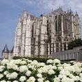 Auch Beauvais hat eine große Kathedrale...