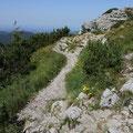 Ein Pfad schlängelt sich zum eigentlichen Gipfel.