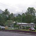 Wenn man nicht gerade durchs Stadtzentrum schlendert, ist Cairns sehr ruhig und idyllisch... Einfamilienhaeuser mit bunten Vorgaerten und im Hintergrund sieht man von ueberall die Berge.