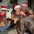 """Der Versuch eines """"Familienfotos"""" unterm Weihnachtsbaum... Roy spielt nicht so recht mit..."""