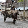 Pferdekarren prägen das Bild in den Altstadtgassen.