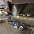 Hühnerfleisch verkommt in Indien nicht, denn die Tiere werden nach Bedarf direkt geköpft.