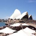 Rund um den Hafen findet man jede Menge Restaurants...