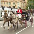 Melbourne kann man auch mit ner Kutsche entdecken... und schaut... es gibt sogar Radwege!!!!