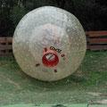 Dies ist der Ball...