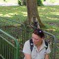 Dies sollte eigentlich ein Foto von mir mit den Affen werden, aber im Moment des Abdrueckens wurde ich ploetzlich ueberrascht...