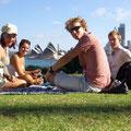 ... aber ein Picknick tut's auch...