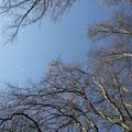 Der Himmel ist blau. Was will man mehr?