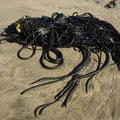 Aber ueberall am Strand liegen nur diese bloeden Schlaeuche rum...