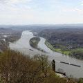 Blick auf den Rhein vom Drachenfels.