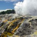 Dies ist nun der groesste Geysir Neuseelands,...