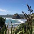 Dies ist der Strand von Piha, etwa eine dreiviertelstunde von Auckland entfernt...