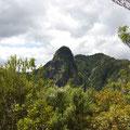 Die Pinnacles sind die Kerne der Vulkane, die aufgrund des festeren Gesteins noch stehen geblieben sind...
