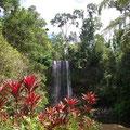 und hier der malerischste Wasserfall...