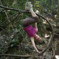 Auf Cat Ba Island kann man in einem Nationalpark wunderbar wandern