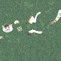 和UESAKA/上坂友禅・猫1