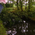 Dammweg  Golzow - Friedrichsaue