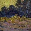 Модоров О.Н..вечернее солнце 26х35 к.м 2011г.