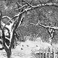 """Французов Б.Ф. """"Зимний сад"""". 1978. Офорт"""